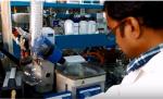 शीशम की पत्तियों से हड्डी जोड़ने वाले शोध को मिला पुरस्कार