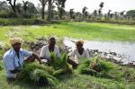 साल 2020 का पहला किसान आंदोलन, 8 जनवरी को गांव बंद का ऐलान