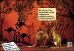 Simply Put: Australian bushfires