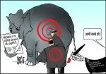 जग बीती: हाथियों की हत्या!