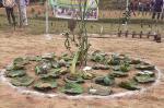 राष्ट्रीय राजमार्ग के किनारे जैविक गलियारा चाहते हैं बिहार के किसान