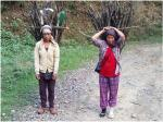 Lack of modern energy sources increase health risk for Nagaland's rural women
