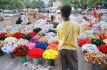 दलित बच्चों पर कहर बन रहा है फूलों की खेती का जहर : रिपोर्ट में खुलासा