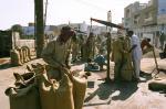 एमएसपी पर खरीद शुरू होने के 18 दिन बाद भी हरियाणा की सरकारी एजेंसी नहीं खरीद पाई सरसों का एक दाना