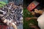 यूरोप में कोरोना महामारी से बढ़ी हिमालय के इन लोगों की मुसीबतें