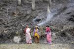 जंगलों में आग के आंकड़े छिपाने में जुटा उत्तराखंड का वन विभाग