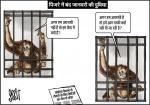 जग बीती: जानवरों की दुविधा