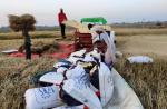 पीएम किसान सम्मान: झारखंड में किसानों को 2,000 रुपए का इंतजार!