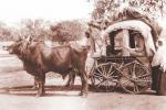 19वीं सदी में महिला मिशनरी ने खोले आधुनिक चिकित्सा के द्वार