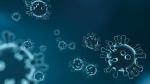 हमारे लिए क्यों जरूरी हैं वायरस