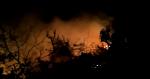 तापमान बढ़ने के साथ ही उत्तराखंड के जंगलों में लगी आग