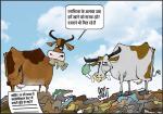 जग बीती: गायों का नया भोजन!