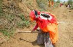 मनरेगा ने गांव की 'आधी आबादी' को आबाद किया