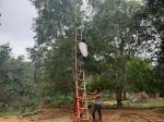 अजमेर के जामुन व्यवसाय पर पहले लॉकडाउन, अब मौसम की मार