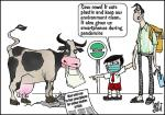 Simply put: Cow in time of COVID-19
