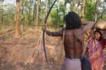 2019 में मारे गए रिकॉर्ड 212 पर्यावरण योद्धा, भारत में गई 6 की जान
