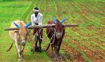 पीएम किसान सम्मान निधि से वंचित रह गए यूपी के 14 लाख किसान