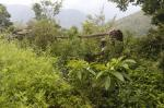 उत्तराखंड: कोरोना काल में भी इस भुतहा गांव में नहीं लौटे लोग