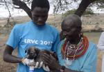 Lessons from a community-driven rabies vaccination campaign in Kenya