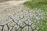 ग्लोबल वार्मिंग के कारण वैश्विक अर्थव्यवस्था को उठाना होगा 10 फीसदी का नुकसान