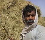 India's agrarian distress: Is farming a dying occupation