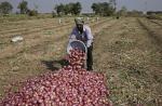 तीनों कृषि कानूनों से आखिर किसे होने वाला है फायदा?