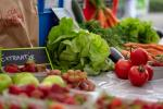 World Food Day: Plant-based diet can fix food inequality, cut premature deaths says report