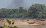 How sand mining along the Narmada is choking web of life