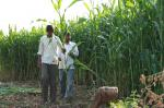 डाउन टू अर्थ तफ्तीश: क्या 2022 तक किसानों की आमदनी हो जाएगी दोगुनी