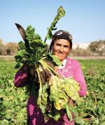 खेती-किसानी से गायब हो रहीं हैं महिलाएं