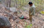 Woman dies in violent wild bear attack in Odisha's Nuapada
