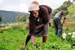प्राकृतिक संसाधनों के प्रबंधन एवं संरक्षण में कहां खड़ी हैं महिलाएं