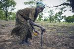 2021 में खेती पर निर्भर 4.9 करोड़ लोगों तक मदद पहुंचाएगा एफएओ