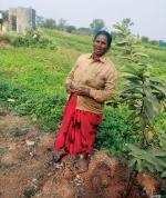 Levelled out: MGNREGA helps bring in more land under cultivation in Ranga Reddy