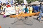 बंगाल चुनाव: क्यों हो रही है नदियों-जलाशयों के संरक्षण को घोषणापत्र में शामिल करने की मांग