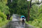 India to have 'normal' monsoon in 2021, predicts IMD