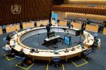 Accelerate efforts to end malaria: World Health Assembly adopts new resolution
