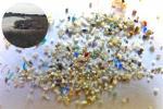 प्लास्टिक उपयोग गंभीर स्तर तक बढा, खारे दलदल में जमा हो रहे माइक्रोप्लास्टिक से चला पता: अध्ययन