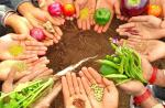 The end of meat and GMOs or the end of us : Part 2
