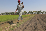 Privacy concerns, no consultation: Farmer and digital rights groups write to Centre on AgriStack