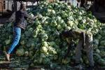 How COVID-19 measures have affected food safety in East Africa