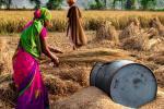 क्या कृषि से जुड़ा कचरा बदल देगा भारत में फैशन का भविष्य