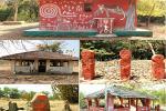 महाराष्ट्र के वारली लोग तेंदुओं को देवता मानकर करते हैं संरक्षण