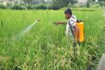 Providing the poorest landless agricultural labourers with farm tools can ameliorate their lot