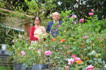 Tale of two Roses: How one discovered another, 125 years ago