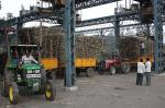 Sugar unit infringes environmental norms: How does it affect lives in Amroha