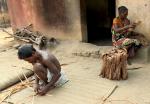 How a creeper plant helps tribals in Odisha eke out a living