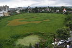 What is killing Uttarakhand's small wetlands? Degraded Niranjanpur pond carves a live example