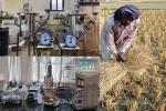 अब कृषि अवशेषों से बनेगी हाइड्रोजन, भारतीय वैज्ञानिकों ने विकसित की अनूठी तकनीक