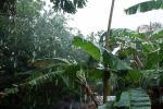 मौसम अपडेट: आज दक्षिण भारत के कुछ हिस्सों में भारी बारिश होने के आसार